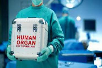 203 transplantation operations conducted in Azerbaijan last year