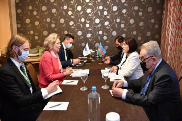 """Azerbaijani Parliament speaker told OSCE PA President that using """"Nagorno-Karabakh conflict"""" phrase is unacceptable"""
