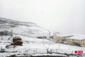Height of snow in northern region reaches 23 cm, temperature falls to 6 degrees of cold - [color=red]VIDEO[/color]