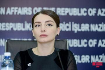 Leyla Abdullayeva responds to Armenia's new FM