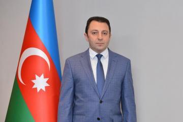 Замминистра иностранных дел: Мы привлечем Армению к ответственности за нарушения прав человека